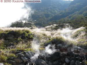 Oct23rd_Hakone089_RC