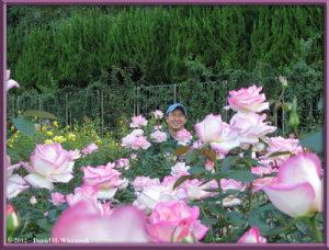 Oct13_61_JindaiBG_RoseGarden_KazuyaRC