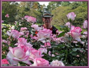 Oct13th_97_JindaiBG_RoseGardenRC