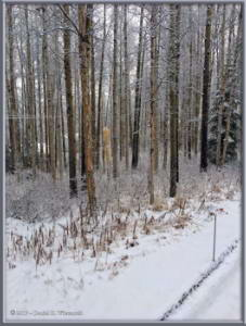 Oct17_3Adj_Home_SnowRC