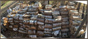 Sept26_6_7_8_Sph_Pano_FirewoodPileRC
