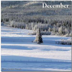 Jan27_17AdjCrop_WalkingSteeleCreekRd_Snow_ColdRC