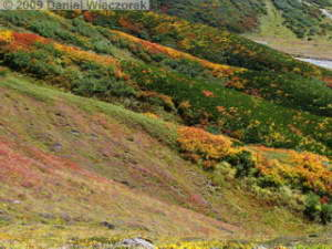 Sep20_Kita_Bessan_to_Jigokudani062_Colors_TateyamaRC.jpg