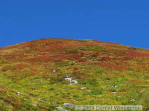 Sep20_Kita_Bessan_to_Jigokudani078_Colors_TateyamaRC.jpg