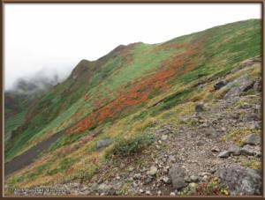 Sep20_305_MtAkitaKomagatake_ClimbingMtYokodakeRC