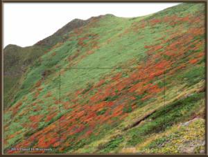 Sep20_306_MtAkitaKomagatake_ClimbingMtYokodakeRC