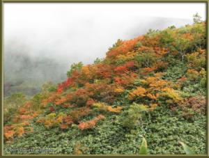 Sep20_32_MtAkitaKomagatake_ClimbingRC