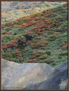 Sep20_50_MtAkitaKomagatake_ClimbingRC