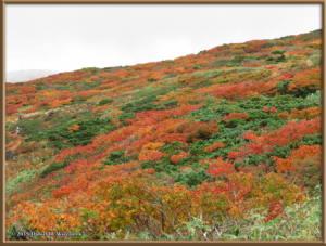 Sep20_86_MtAkitaKomagatake_ClimbingRC