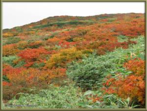 Sep20_87_MtAkitaKomagatake_Climbing_HealedRC