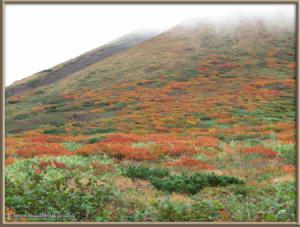 Sep20_90_MtAkitaKomagatake_ClimbingRC