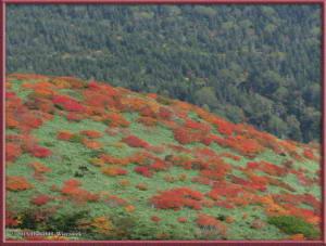 Sep21_129_Akita_Komagatake_TowardsMtNyuutoRC