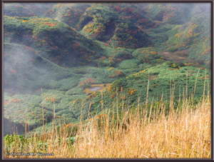 Sep21_29_Akita_Komagatake_HikingToMtSasamoriRC