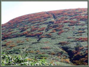 Sep21_59_Akita_Komagatake_ClimbingMtYuumoriRC