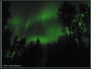 Sept2nd_001_AuroraRC