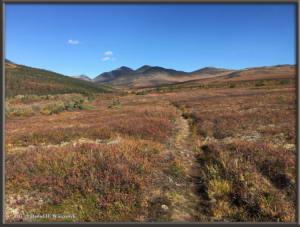 Sep04_14_HikingMtPrindleTrailRC