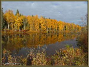 Sept17_034_ChenaHotSpringsRoad_AutumnColorRC
