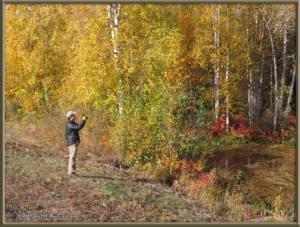 Sept17_046_ChenaHotSpringsRoad_AutumnColorRC