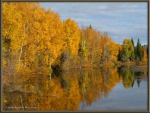 Sept17_052_ChenaHotSpringsRoad_AutumnColorRC
