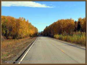 Sept17_055_ChenaHotSpringsRoad_AutumnColorRC