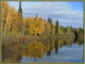 Sept17_065_ChenaHotSpringsRoad_AutumnColorRC