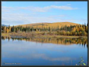 Sept17_067_ChenaHotSpringsRoad_AutumnColorRC