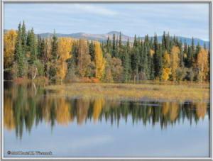 Sept17_069_ChenaHotSpringsRoad_AutumnColorRC