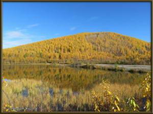 Sept17_074_ChenaHotSpringsRoad_AutumnColorRC