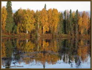 Sept10_04_AutumnColor_CHSRRC