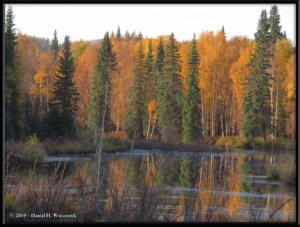 Sept10_09_AutumnColor_CHSRRC