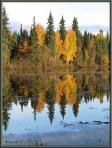 Sept10_11_AutumnColor_CHSRRC