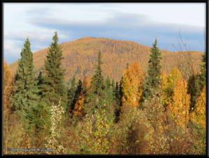 Sept10_13_AutumnColor_CHSRRC