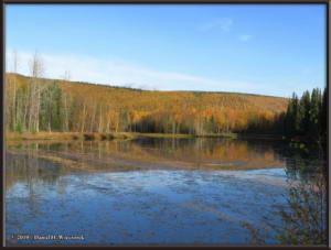 Sept10_15_AutumnColor_CHSRRC