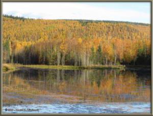 Sept10_16_AutumnColor_CHSRRC