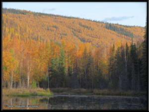 Sept10_19_AutumnColor_CHSRRC
