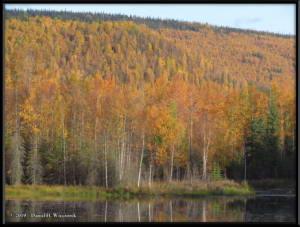 Sept10_20_AutumnColor_CHSRRC