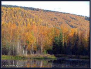 Sept10_23_AutumnColor_CHSRRC