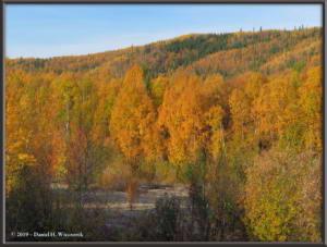 Sept10_32_AutumnColor_CHSRRC