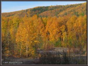 Sept10_36_AutumnColor_CHSRRC