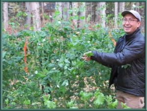 Sept8_06_AutumnColor_GardenRC
