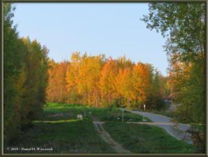 Sept8_20_AutumnColor_WalkFromHomeRC