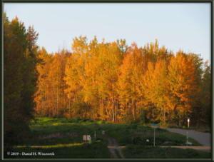 Sept8_21_AutumnColor_WalkFromHomeRC