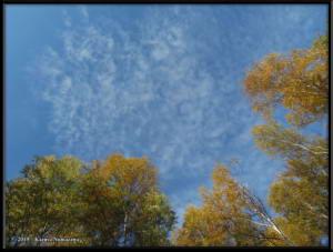 Sept8th_001_SkyRC