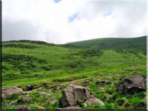 MtChokai_GrassScene01RC.jpg