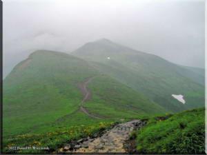 MtChokai_Trail01RC.jpg