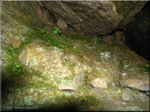 Aug26_Nippara_LimestoneCave02RC.jpg