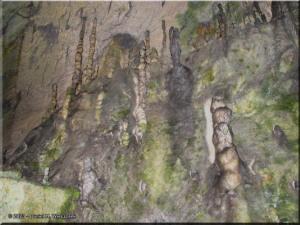 Aug26_Nippara_LimestoneCave29RC.jpg