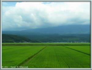 Aug07_088R_TrainToKisakata_SceneryRC