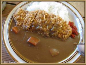 Aug9th111_HakubaOoike_CurryRC
