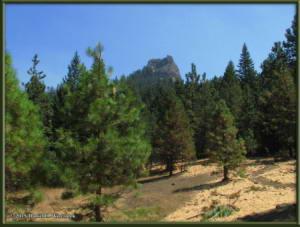 Aug08_11_ClimbingPilotRockRC